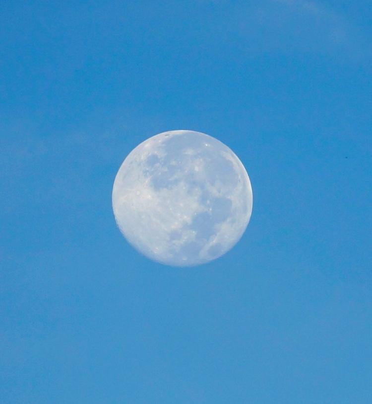 morning moon close up