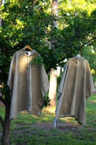 ponchos in the grapefruit tree
