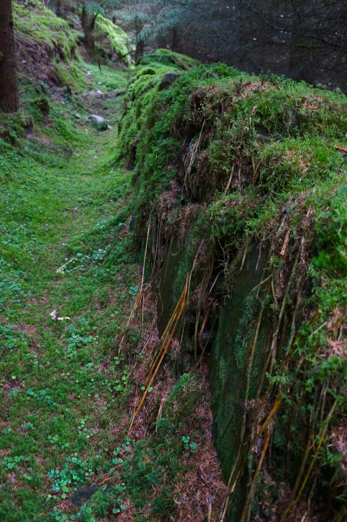ancient wall high in the Glendalough Valley