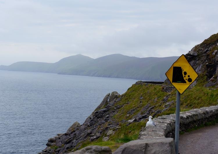 falling rocks ahead