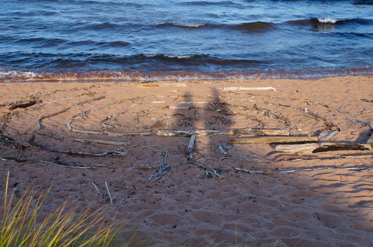shadows on the driftwood labyrinth