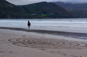 galloping horse - Rossbeigh