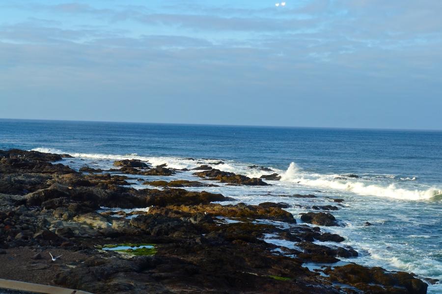 Yachats coastline from the Adobe Resort Loft