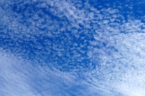 cotton puffs of cloud in the blue sky