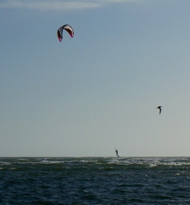 an adult soaring with his kite