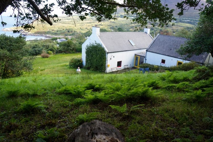one view - Lawrence Home - Kells, Ireland
