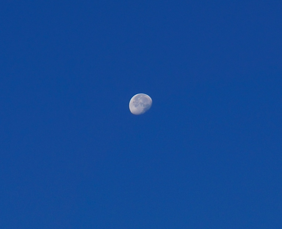 waning morning moon