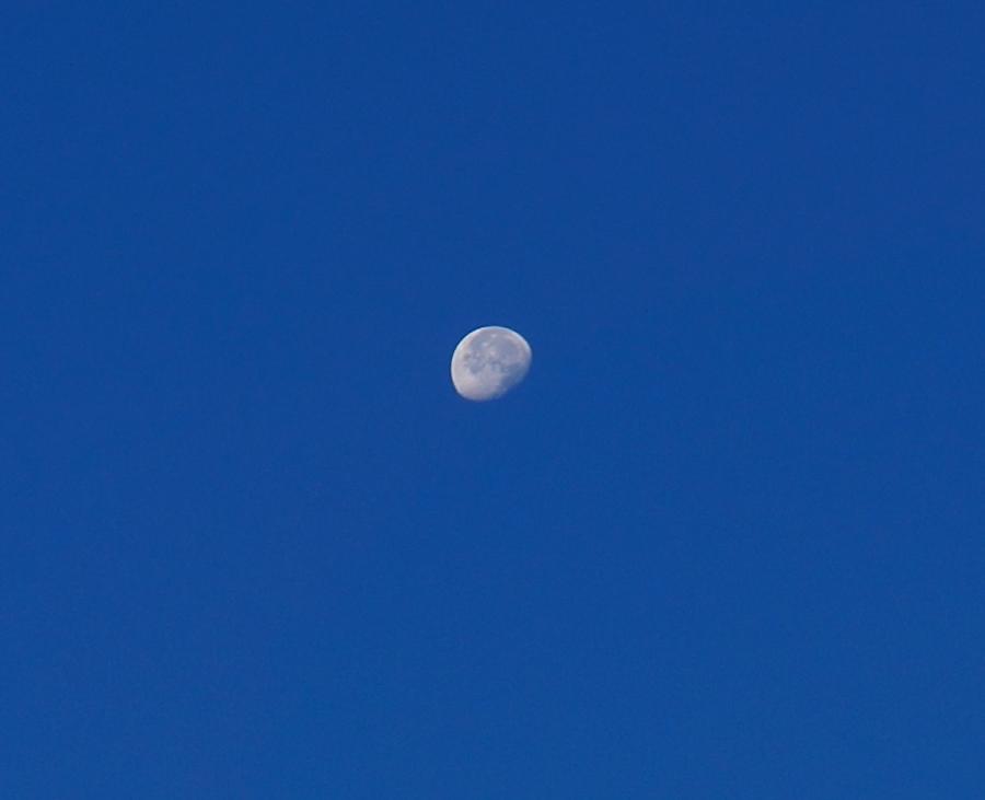 waning morning moon