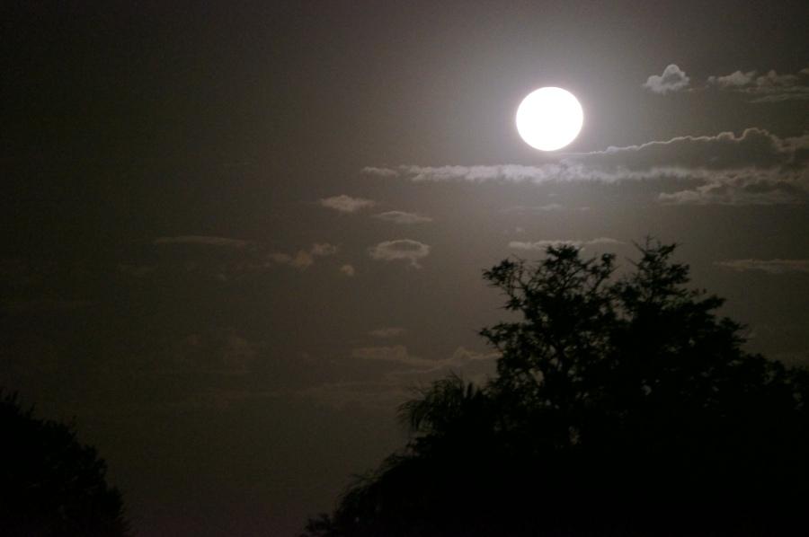 Beautiful moon tonight