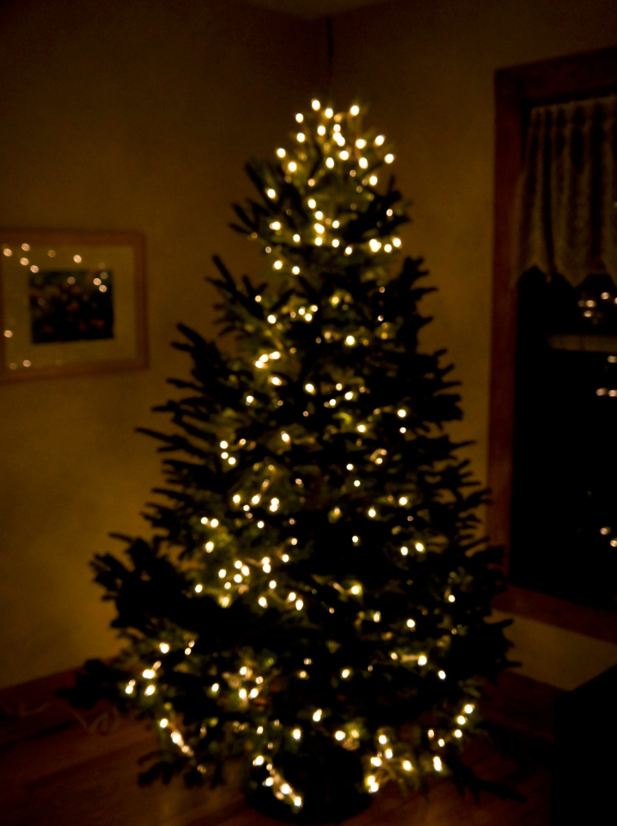 Our inside tree - thank you Jim and Doreen Bell - Bells of Christmas, Northport, MI.jpg
