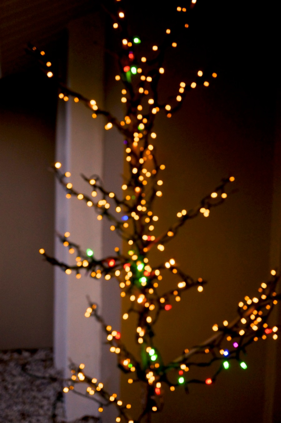 The christmas stick - 2416 Cass St, Sarasota, 2014.jpg